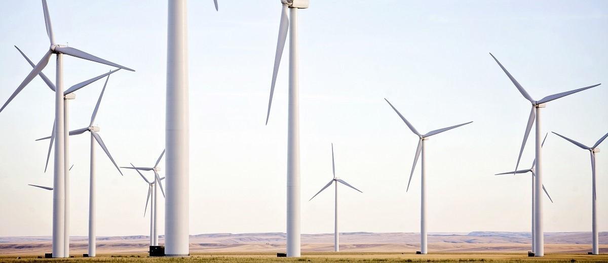 離岸風電環境調查與監測服務