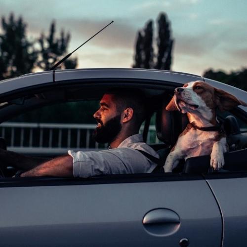 車內空氣品質與內裝部件材料VOC相關測試服務 ! SGS為您建康安全把關 !