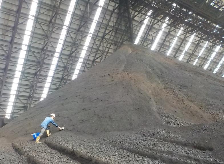 煤炭與生質燃料