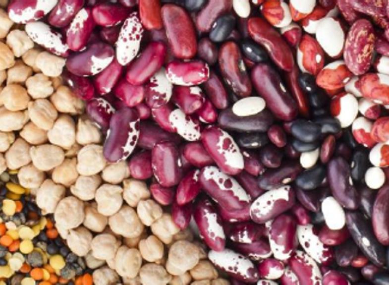 肥料取樣與分析化驗